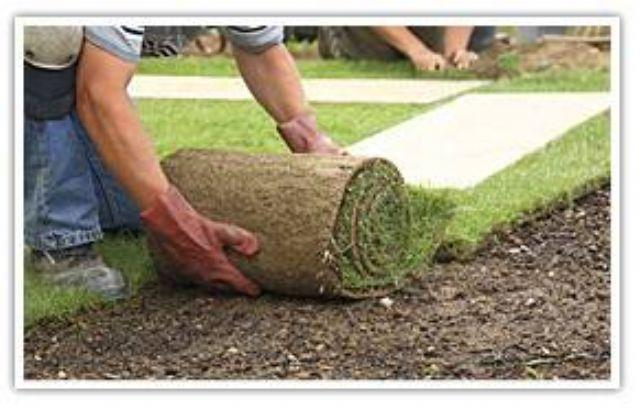 underlag til rullegræs